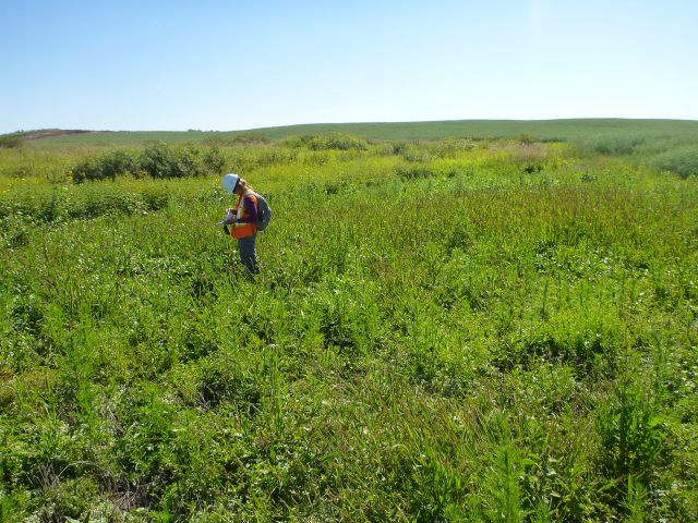 CanNorth collaborates in conservation project for a greenfield mine in southern Saskatchewan